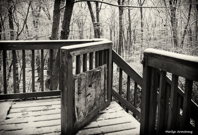 snowy fence on deck black and white BW