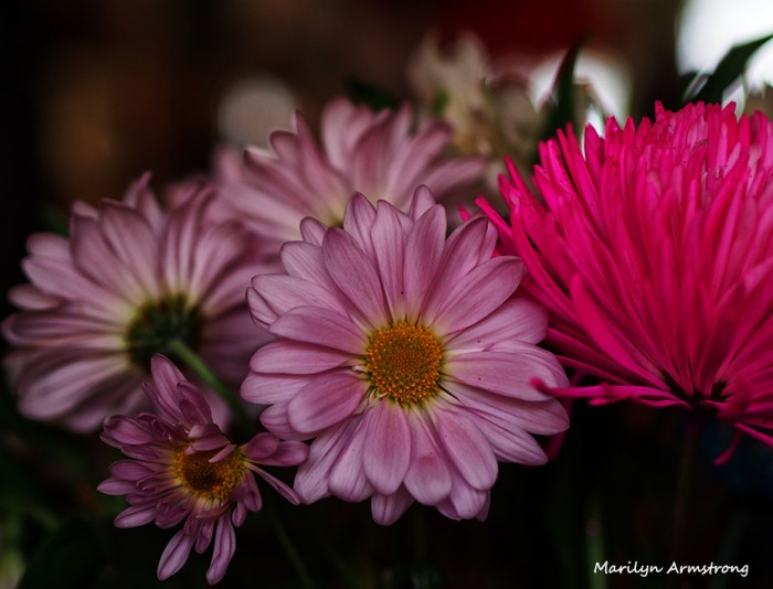 December Bouquet 4