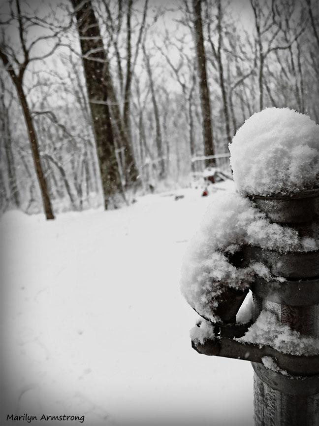 72-February Snow OO_3