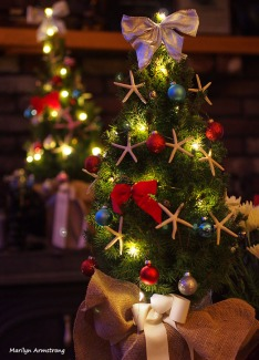 72-perfect-christmas-tree_01.