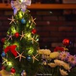 perfect christmas tree ll bean