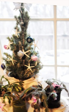 christmas tree dining room