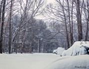 72-Blizzard-Driveway-025