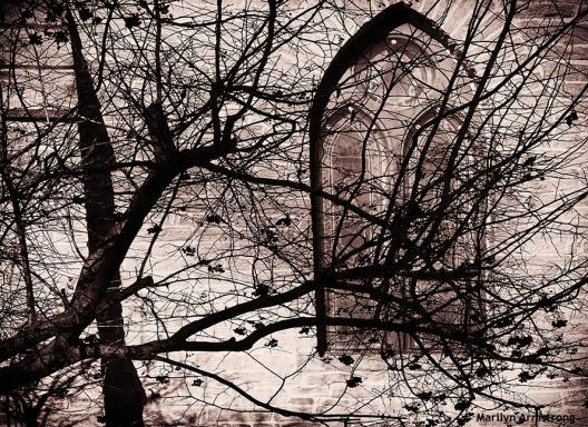 bw hadley church shadows
