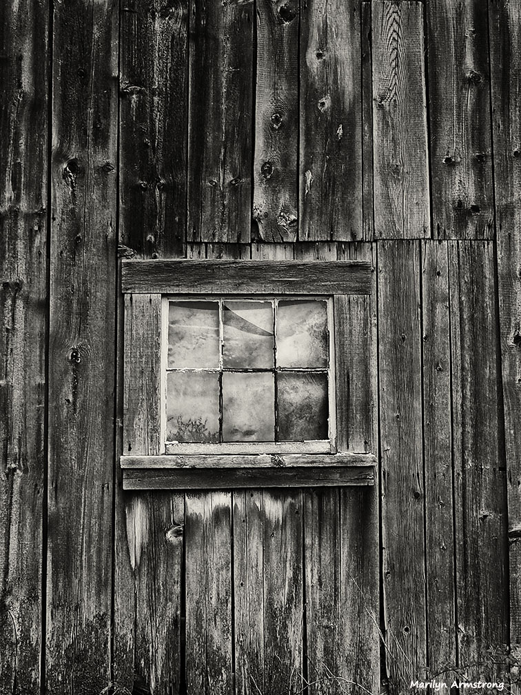 Barns and bark cee s black white photo challenge for Where to buy old barn wood