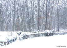 72-Fence-Blizzard_023