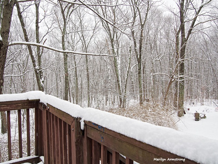 deck and snowy woods