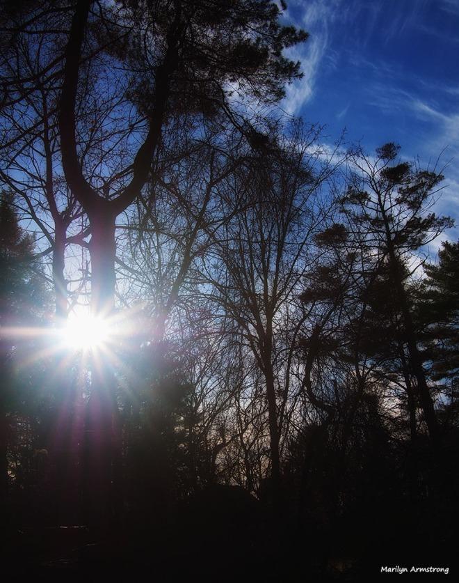 winter sun January hadley