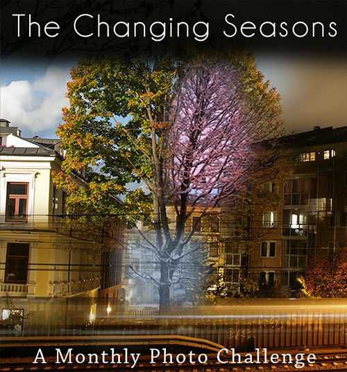 thechangingseasons_6367 large