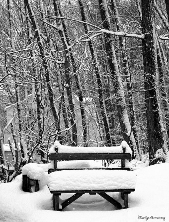72-BW-Bench-In-Snow-001