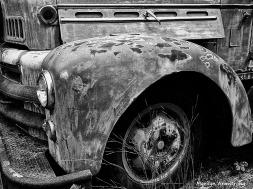 Old Number 2 wheel