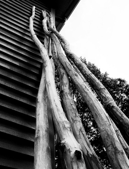 BW teepee poles