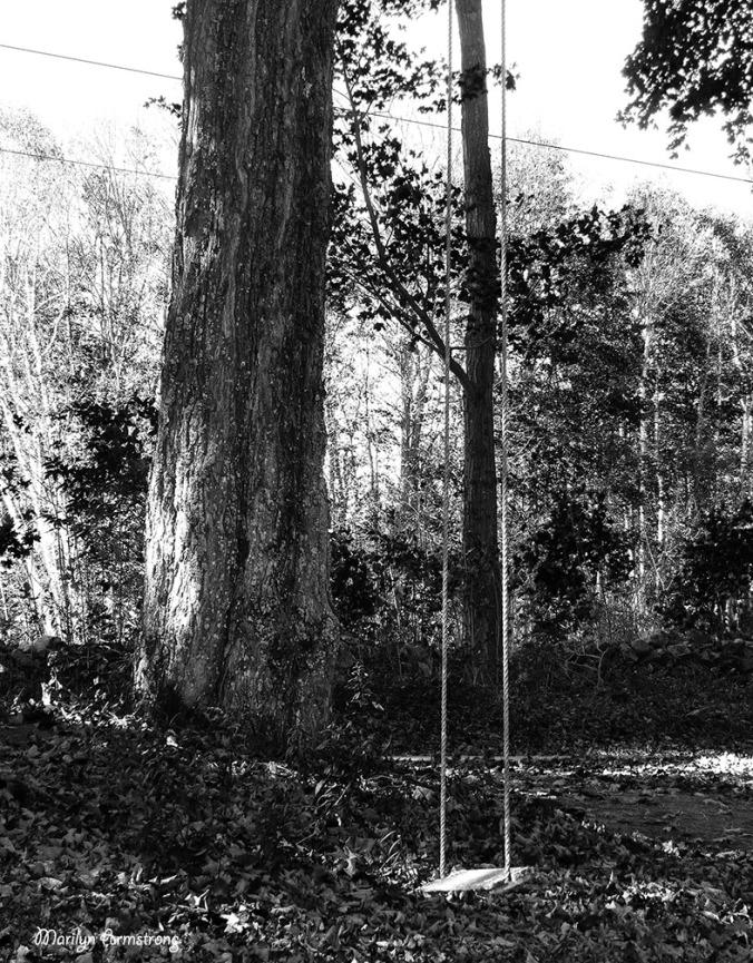 72-BW-Swing-Peacham-Sunday_075