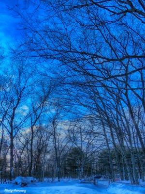 72-Feb10-Sunset_049