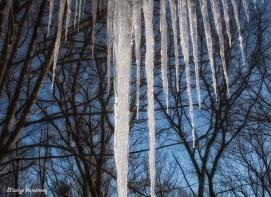 ice dam icicles oil