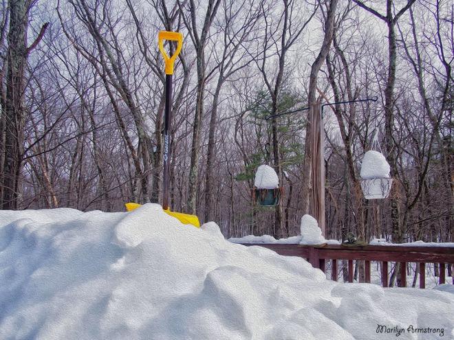 snow shovel in oil