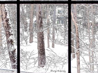 Neighbors in snow
