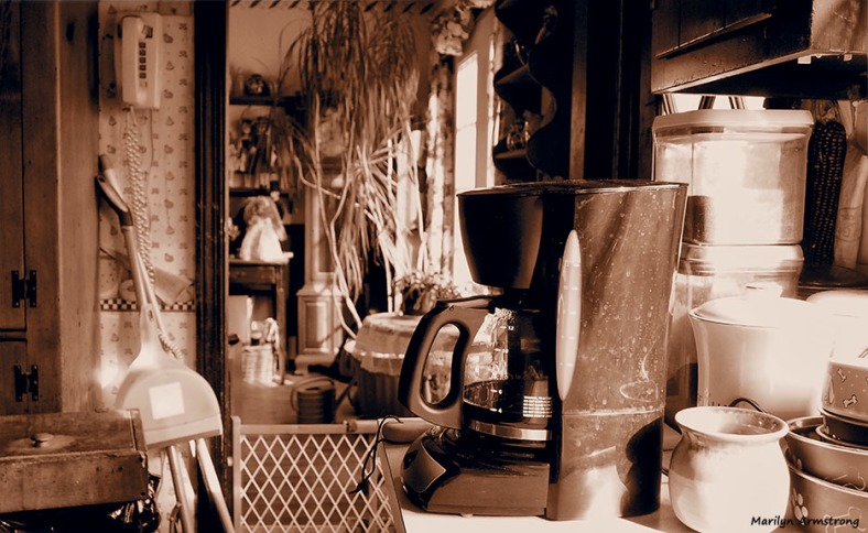 sepia kitchen wide monochrome
