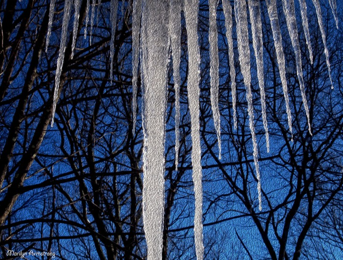Icicle oils natural OO