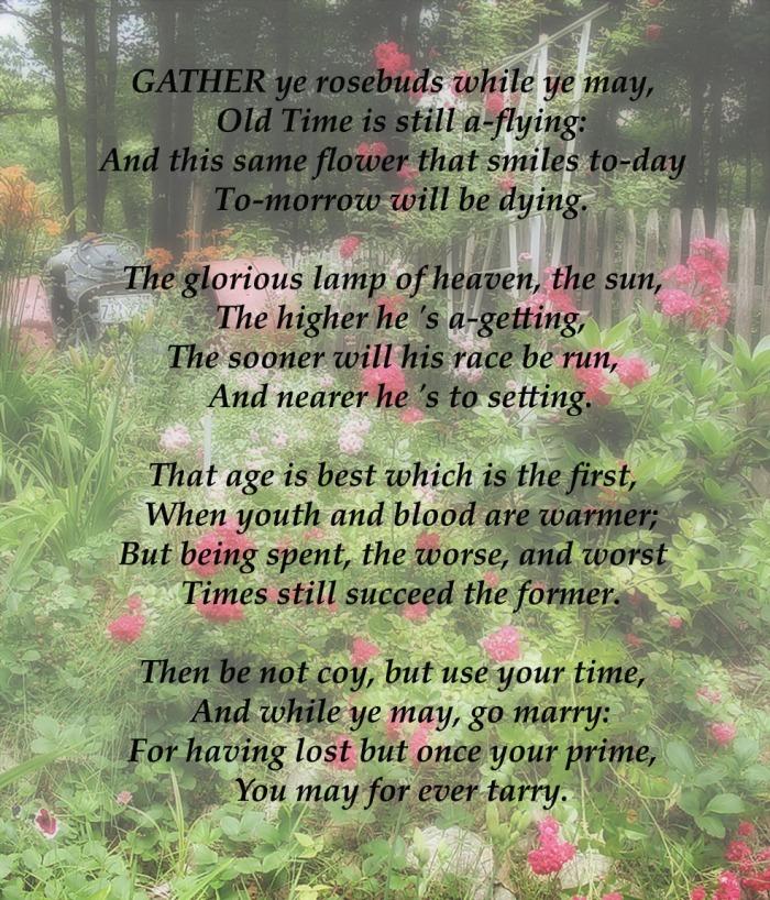 Gather Ye Rosebuds -2