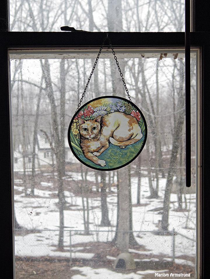 72-Cat-Last snow_20