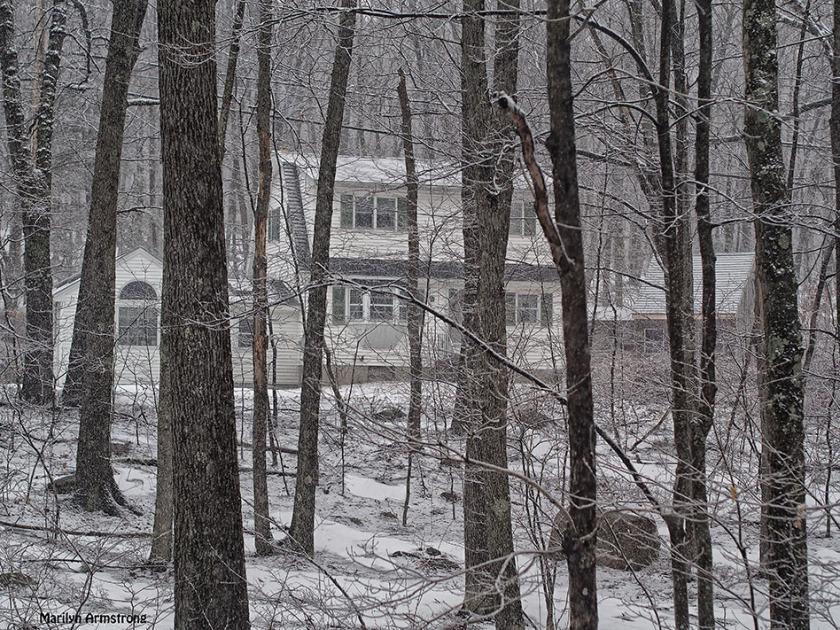 last snow low contrast winter