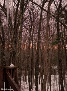 72-Melting-Sunrise-Early March_10