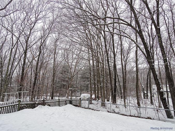 Last winter - 2014 ...