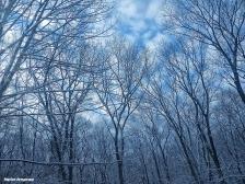 72-Sky-Last-snow-D_136