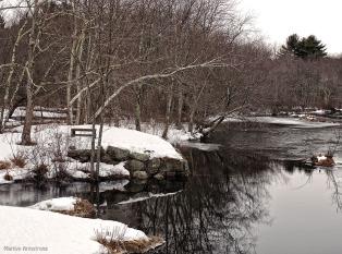72-Snowy River-032015_31