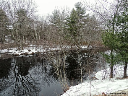 72-Snowy River-032015_52