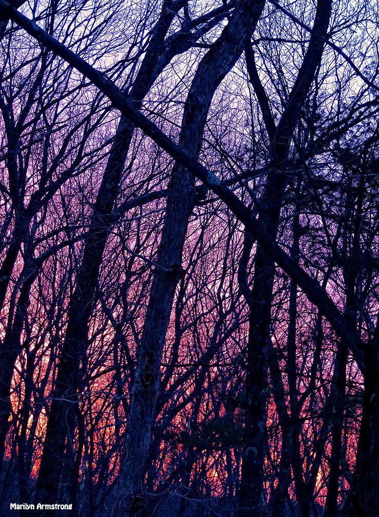 72-Sunrise-0310_06