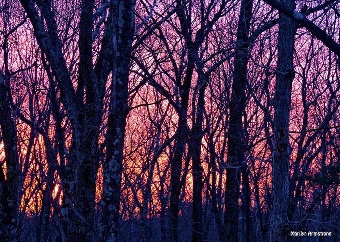 72-Sunrise-0310_11