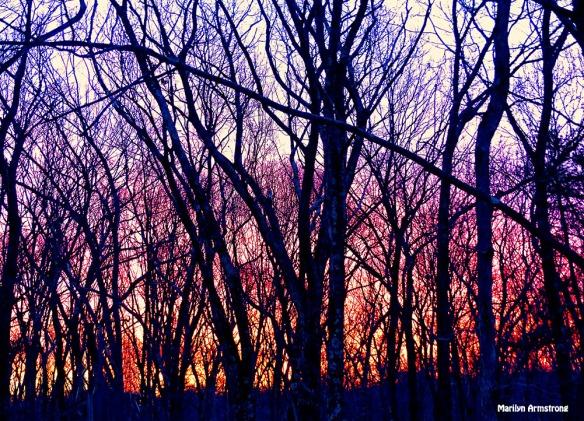 72-Sunrise-0310_13