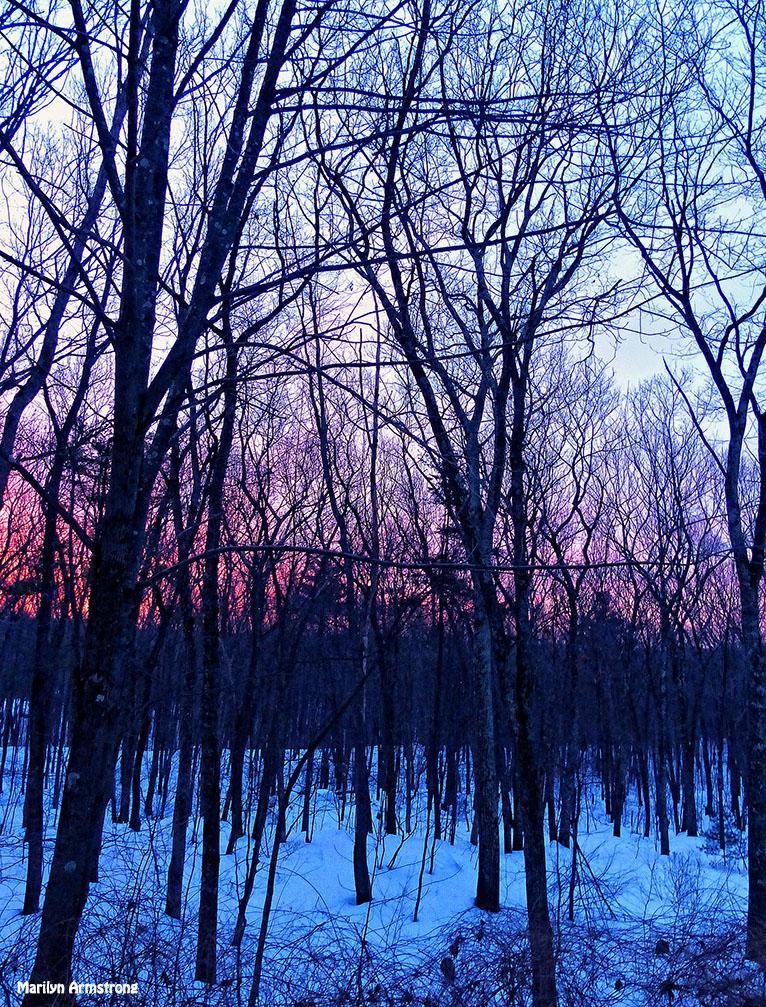 72-Sunrise-0310_15