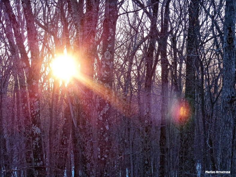 The brightest sunrise