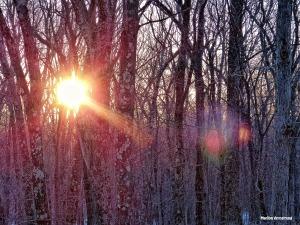 72-Sunrise-031815_02