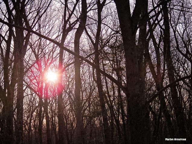 72-Sunrise-March-12_12