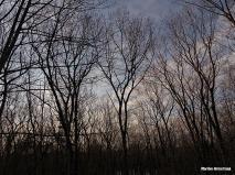 72-Sunrise-Sky-March-12_06