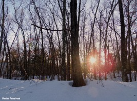 72-Sunset-March-12_39