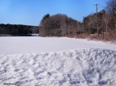 Whitins Pond, frozen and snowy