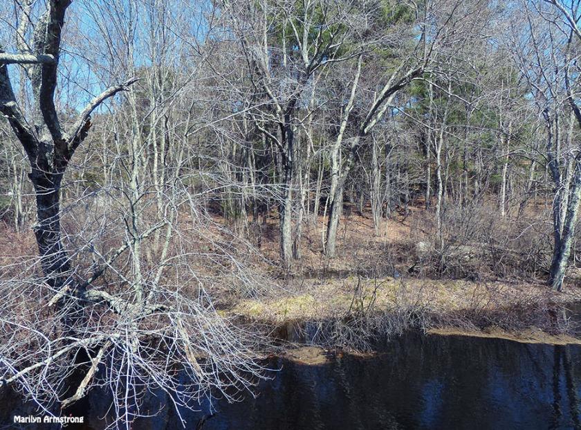 72-25mm-WA-River-Sunday-ZS200_138