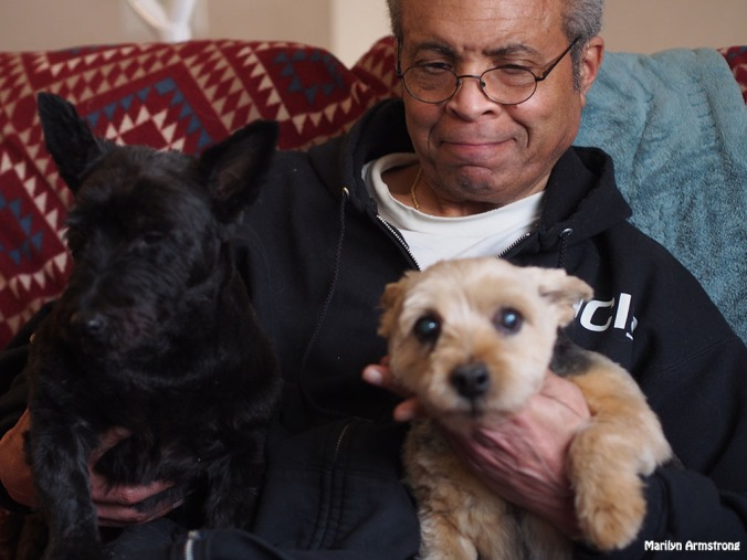 Garry with Terriers - Dogs