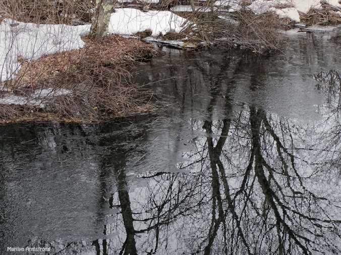 72-Reflections-Snowy River-032015_65