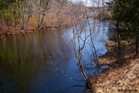 72-River-GA-Sunny-Sunday_054