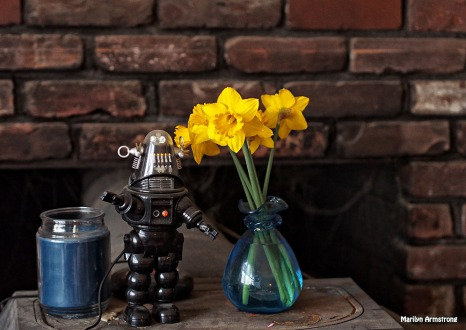 Robbie the Robot, with daffodils