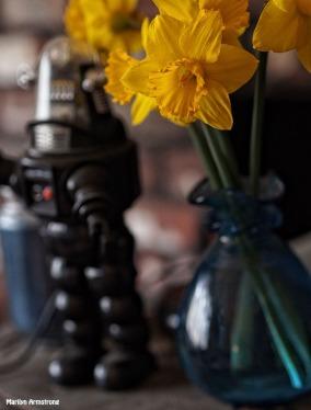 Robbie with daffodils