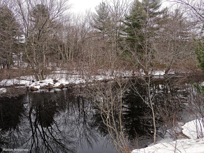 72-Snowy River-032015_45