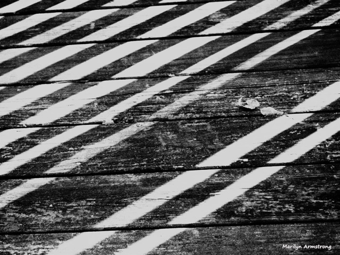 bw striped deck black and white