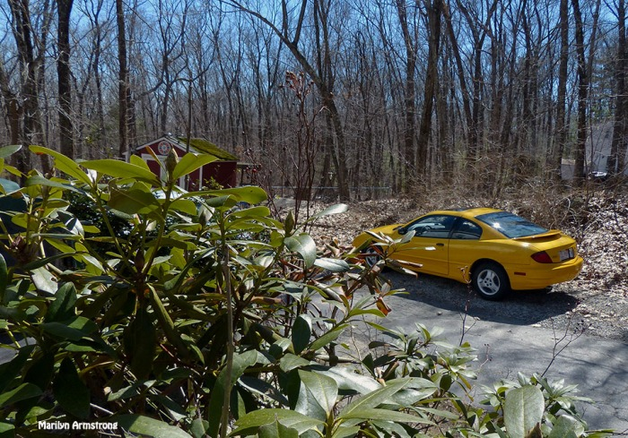 72-Yellow Car-Sunny Day_031